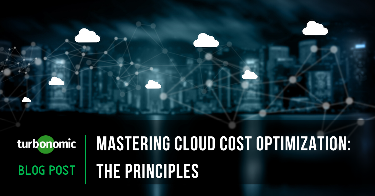 Mastering Cloud Cost Optimization: The Principles